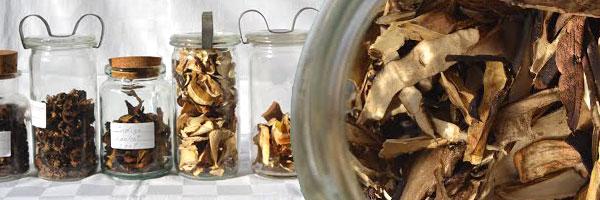tørrede svampe i glas